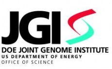a description of the join genome institute Jgi - joint genome institute looking for abbreviations of jgi it is joint genome institute joint genome institute listed as jgi.